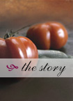Bloodys by Buz: The Story